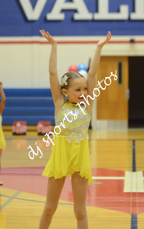 2019-01-27 SHA Dance Team Senior Night