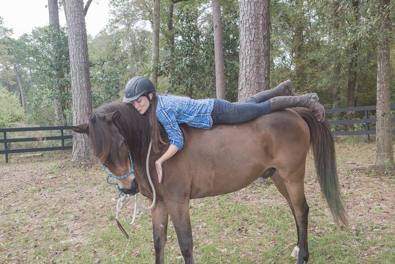 horses & staff-437.jpg