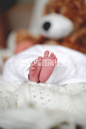 Samantha and Shawn New Born