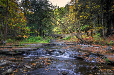 Quiet Stream   Photography by Wayne Heim