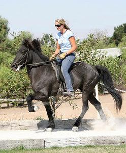 Hobby Horse Ranch 2006
