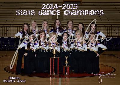 ACHS Dance Team ~ 2015
