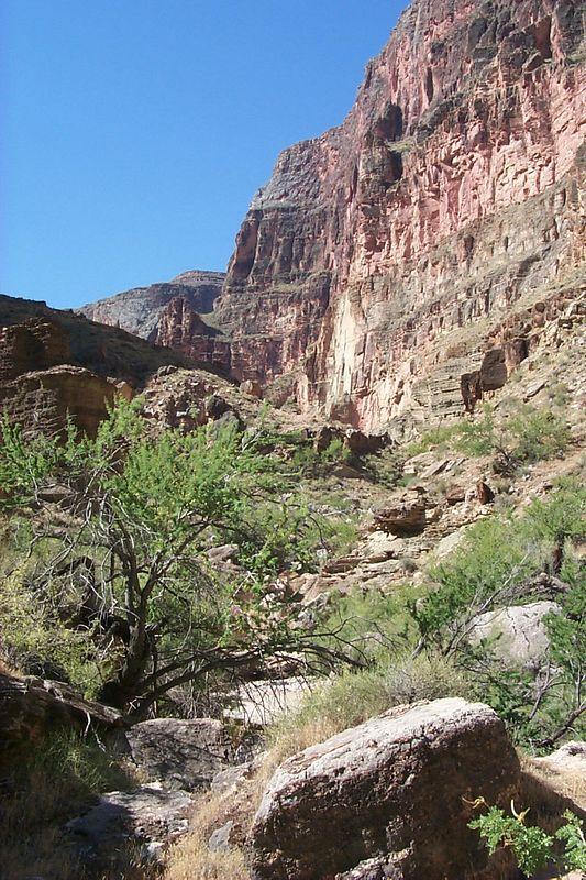 View up 140 Mile Canyon   (Jun 07, 1999, 10:06am)