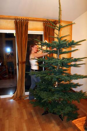 xmas tree 2006