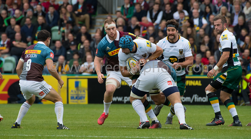 Harlequins vs Northampton Saints, Aviva Premiership, Twickenham Stoop, 8 October 2016
