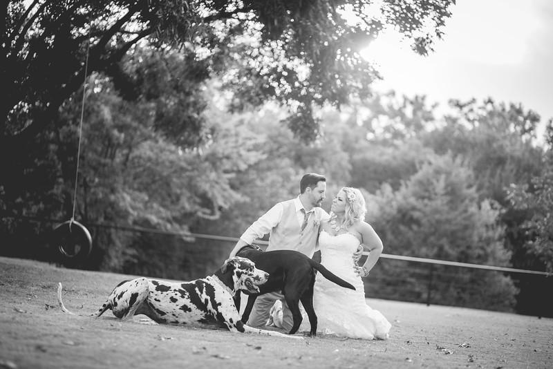2014 09 14 Waddle Wedding-898.jpg