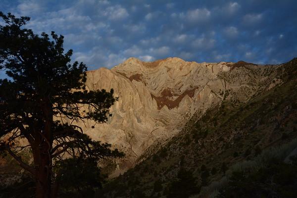Mt. Laurel NE Gully