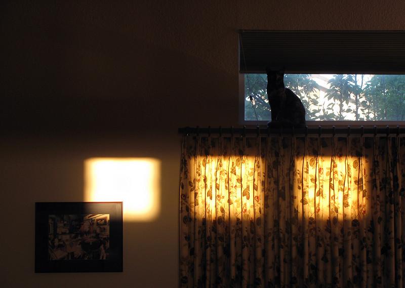 dawnlight.jpg