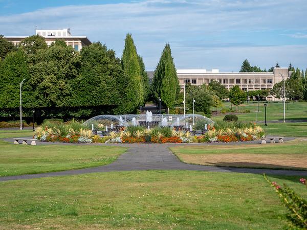 Washington State Aug 2020
