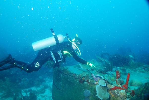Roatan 11-27-07, French Cay Bay, Missing Link & Iron Shore