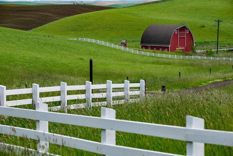 Red barn with picket fence