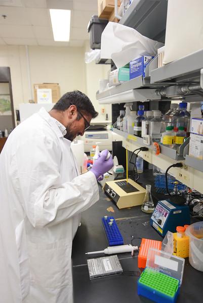 CHIRP 2019 labs030.JPG