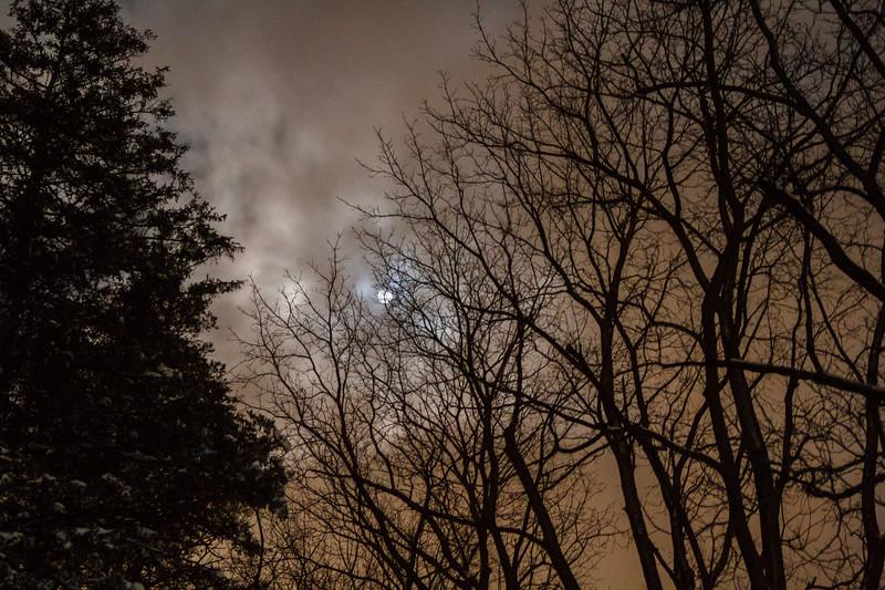 AIPPhoto-January2119-Image2.jpg
