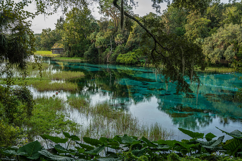 Rainbow Springs State Park - Dunnellon, Florida
