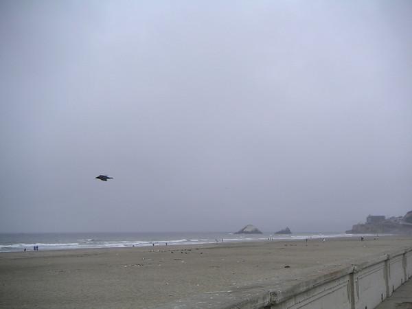 San Francisco Trip 2004
