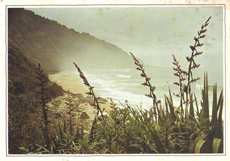 West Coast Flax.jpg