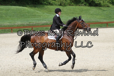 Grand Prix Ring: High Child/Adult Jumpers