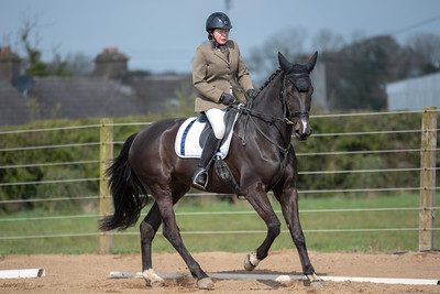 Cheval Open to All Dressage League