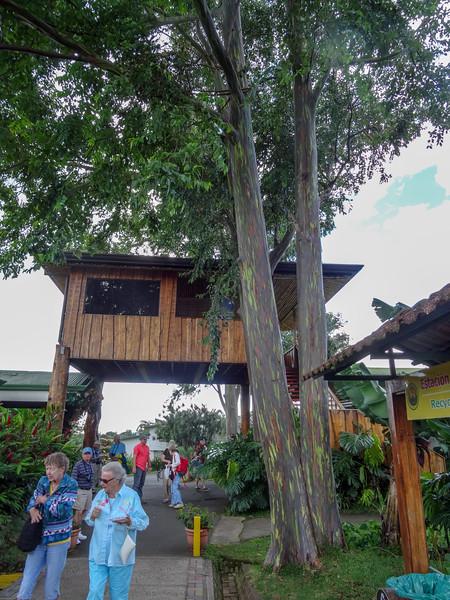 Costa Rica 2015-0547.jpg