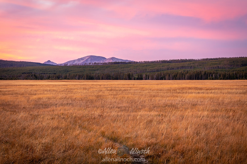 Dusk in Yellowstone National Park