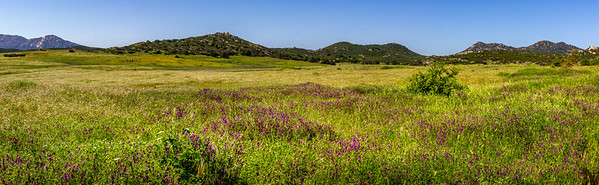 Hike - Barnett Ranch, Apr 10, 2019
