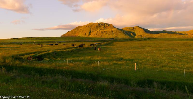 Uploaded - Vík & Vestmannaeyjar July 2012 116.JPG