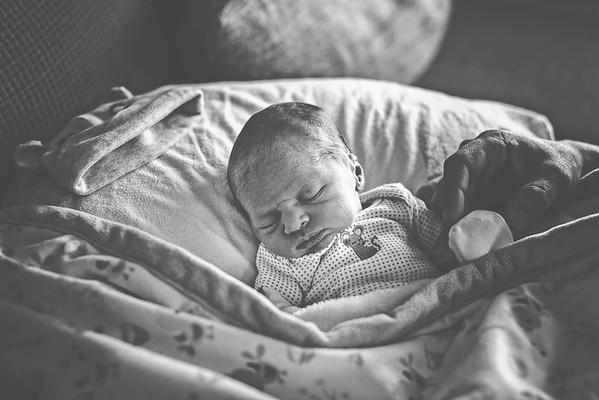 Pleasant Prairie Wisconsin // Newborn // Aubrey