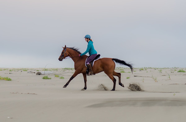 Beach Riding 2019