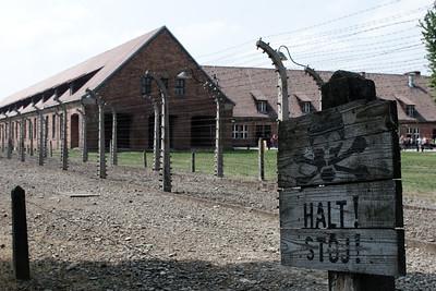 4.5. Auschwitz-Birkenau