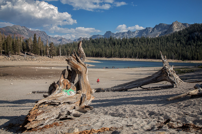 August 27 - Horseshoe Lake, Mammoth Lakes, CA.jpg