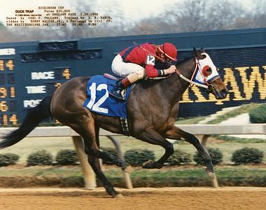 DUCK TRAP - 2/24/1996