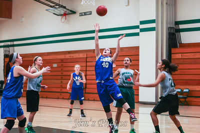 2013-14 Girls Basketball