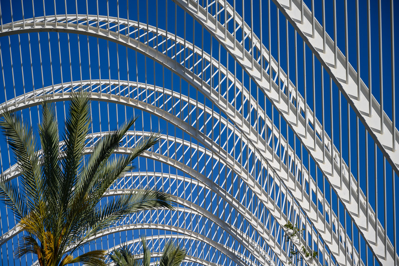 Palm Fronds Metal and Plant