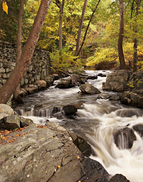 rockstream11x14glossy.jpg