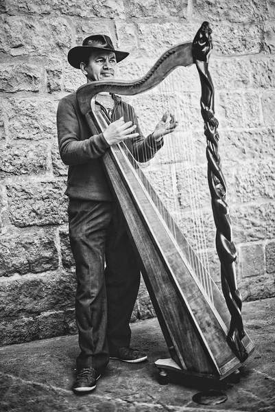 Harping Away