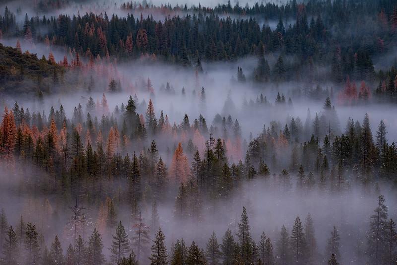 Yosemite (2015-12-11)