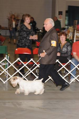 Everglades Terrier Club Show 2010