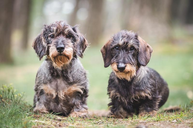 Mabel & Winnie Done-9.jpg