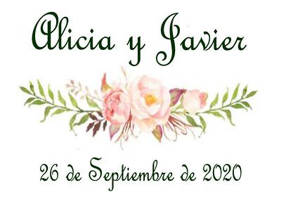 Alicia y Javier