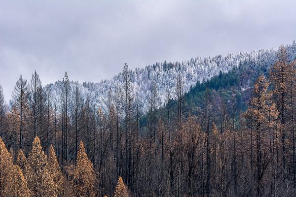 Delta Fire 2018 - Pollard Flat California area