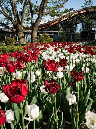 RGB (Royal Botanical Gardens)