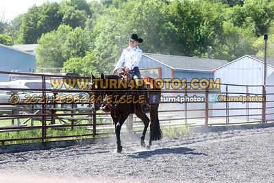 Open Western Pleasure Stakes   08/15/21