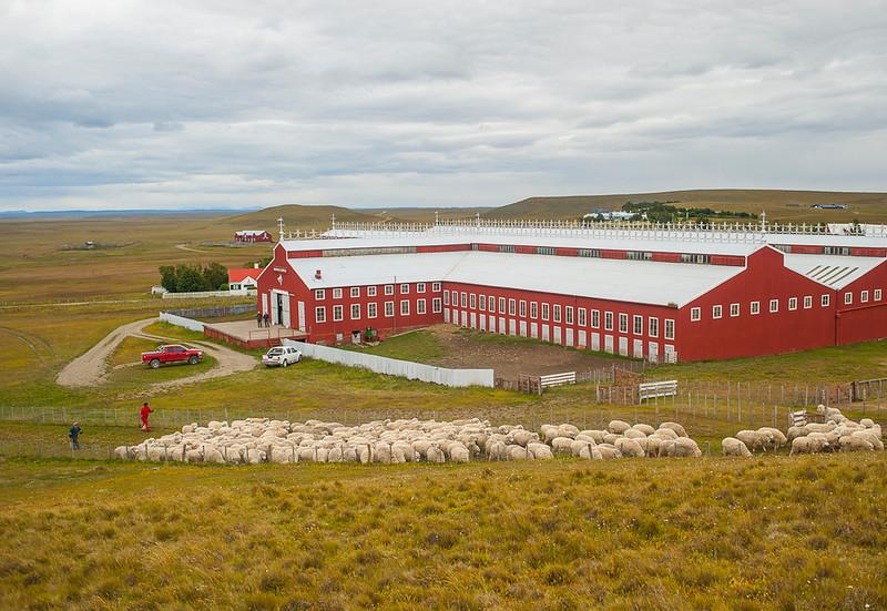 Maria Behety sheep barn, Tierra del Fuego, Argentina. The largest sheep shearing barn in the world.