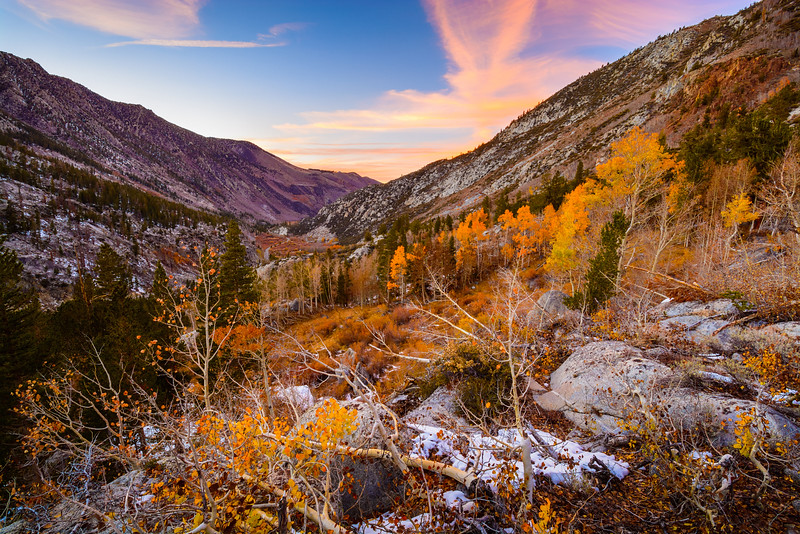 Fall Colors in Bishop Creek Canyon, Sierra Nevada, California
