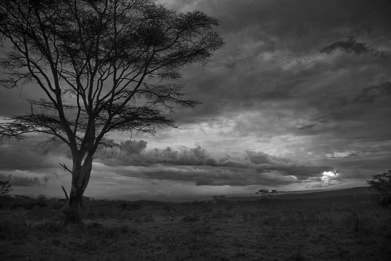 Kenya-102013-1354-Edit.jpg