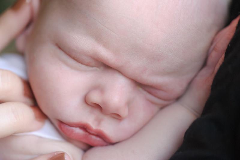 Aiden McFarland Newborn ~ 8.2014-315.jpg