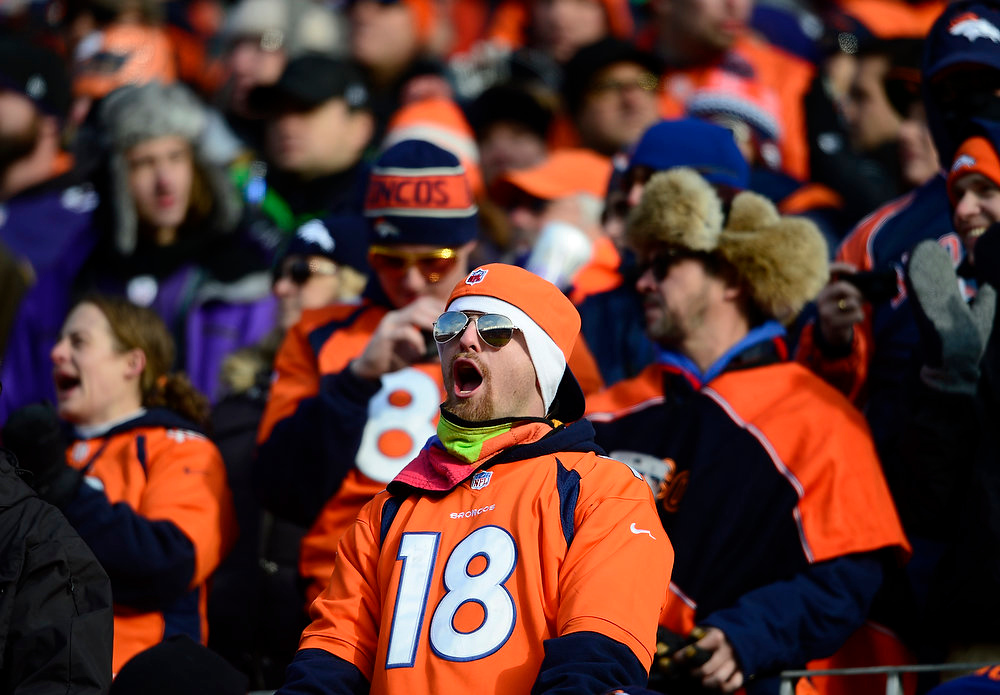 . Broncos fans cheer in the first quarter. The Denver Broncos vs Baltimore Ravens AFC Divisional playoff game at Sports Authority Field Saturday January 12, 2013. (Photo by AAron  Ontiveroz,/The Denver Post)