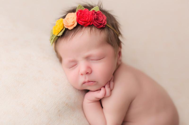 Lynlee Newborn Session