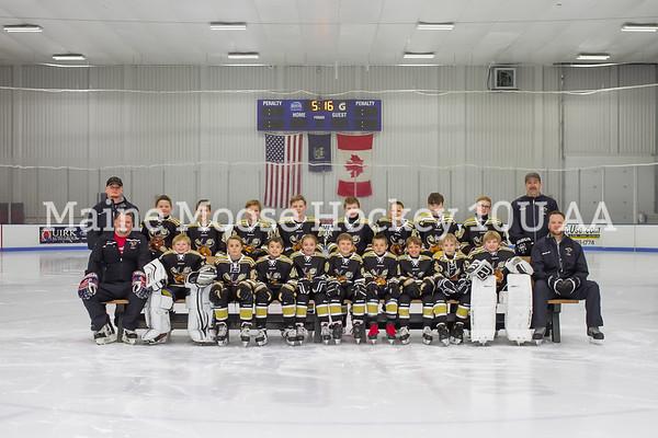 Maine Moose Hockey 10U AA