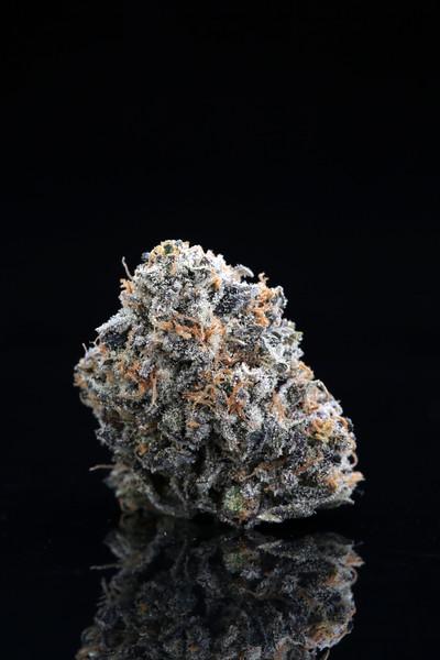 Kings Cannabis S.T. 2.1